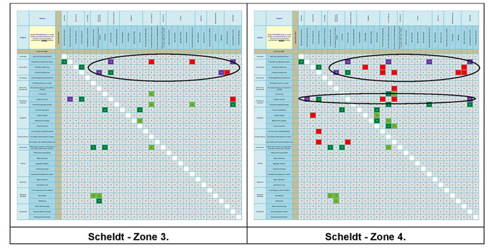 Figure 21b:  Main conflict scores for the Scheldt Estuary.