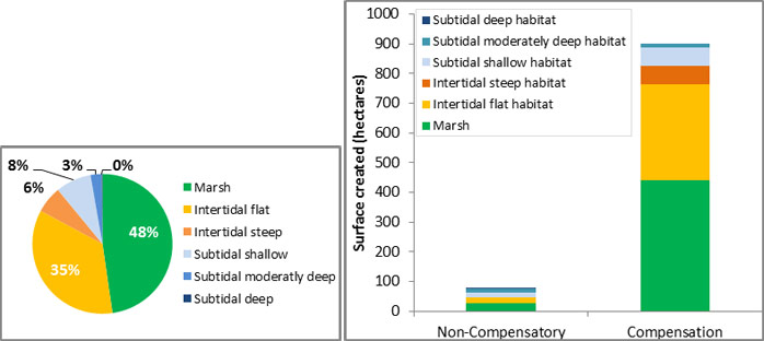 Figure 11: Distribution of different habitat types created by the TIDE cases (Left), and overview habitat creation per habitat type by the TIDE compensation measures and non-compensatory measures (Right)