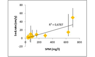 Figure 13: Correlation between SPM and the average sedimentation rate on the site (R²=0,6787, T=4,6, p<0,001).