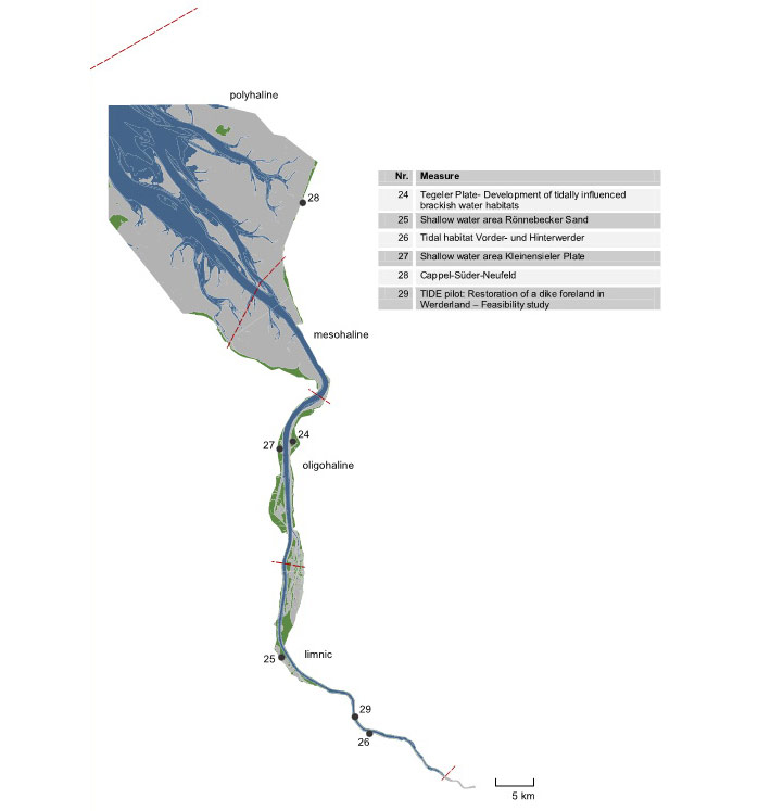 Figure 22: Locations and titles of management measures collected according to the Weser estuary with indication estuary zones (limnic, oligohaline, mesohaline, polyhaline)